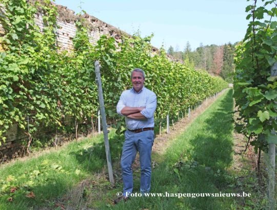 Peter Nijskens wijngaard clos